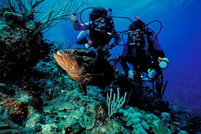 Ron and Carol Goldman pose with a friendly Nassau Grouper.