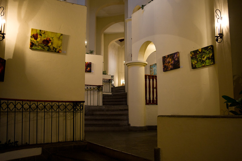 Another view of the hallway with artwork.