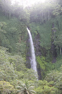 One of the many waterfalls on Cocos Island.