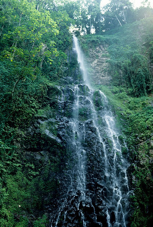 A cascading waterfall provides an inspiring view on Cocos Island.