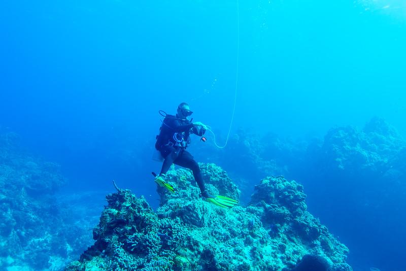 Divemaster Javier launching the surface signaling device at Palancar Bricks dive site - Cozumel, Mexico - March 2016