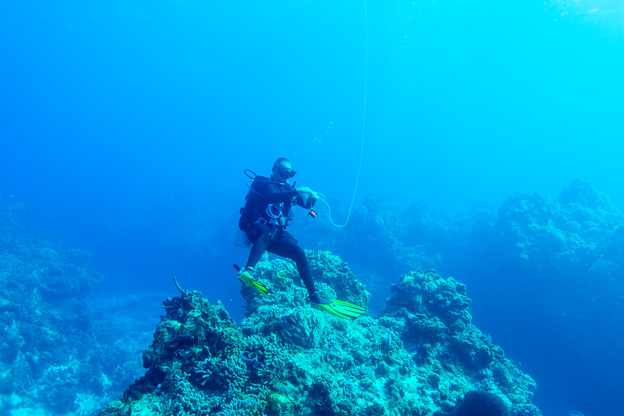 Divemaster Javier launching the surface signaling device at Palancar Bricks dive site - Cozumel, Mexico - March 2016