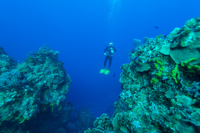 Divemaster Javier  - Cozumel, Mexico - March 2016