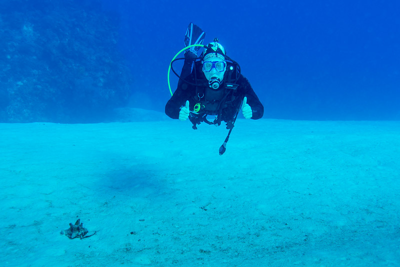 Ernie at Palancar Bricks dive site - Cozumel, Mexico - March 2016