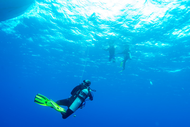 Javier deploying the surface signal at Cedral Pass dive site - Cozumel, Mexico - March 2016