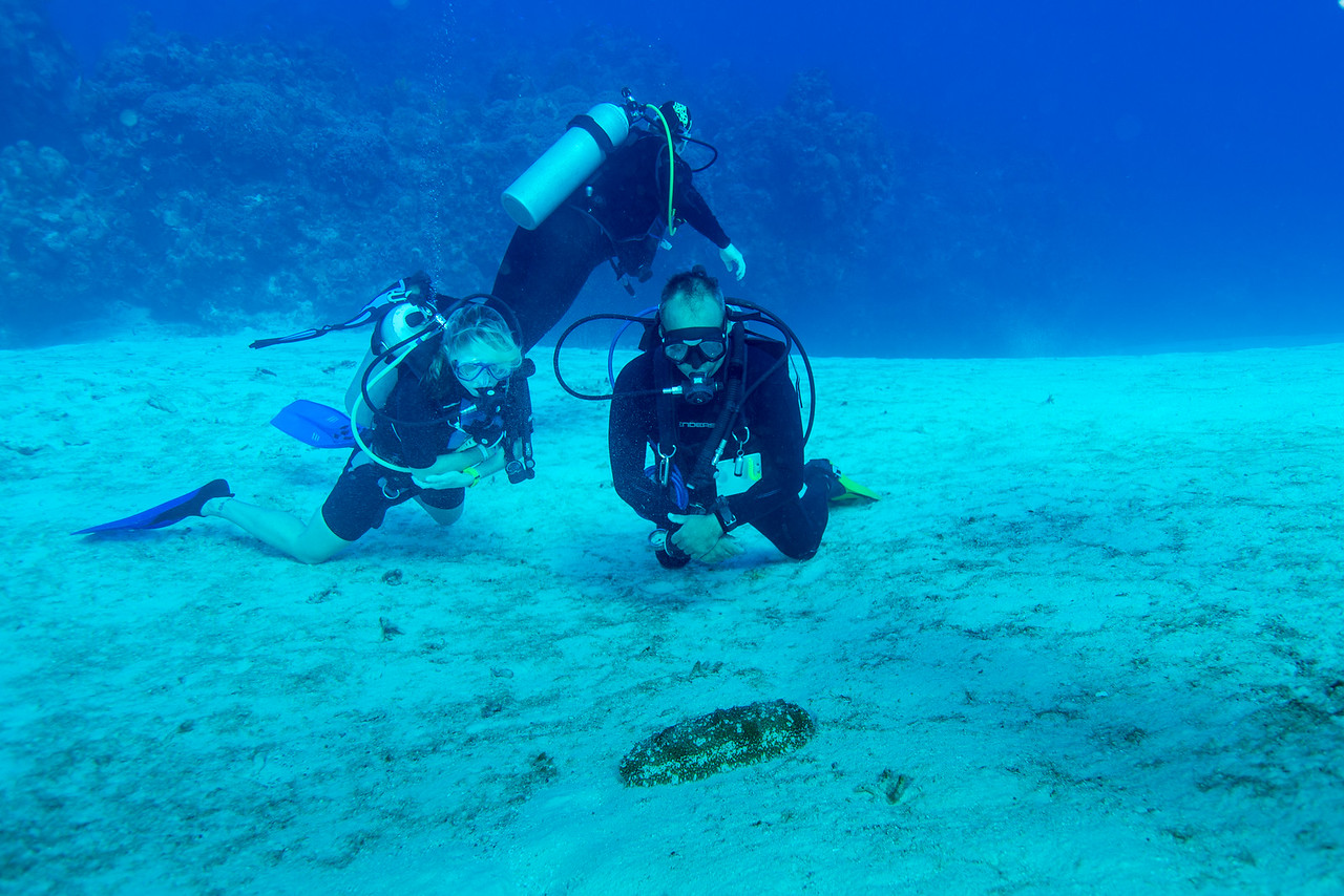 Leigh and Javier observing some type of moving critter at Palancar Bricks dive site - Cozumel, Mexico - March 2016