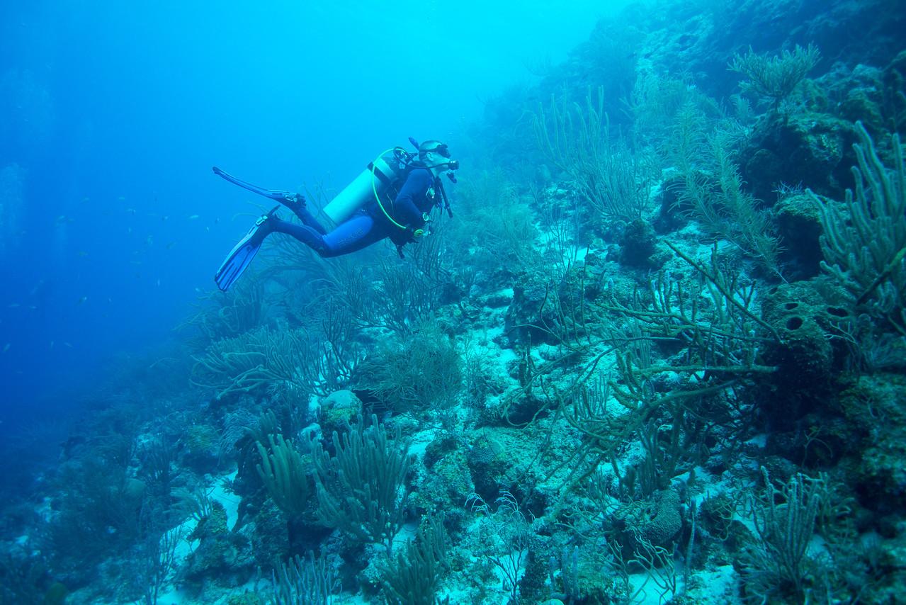 Dave Manning, Short Wall dive - Curaçao 2013