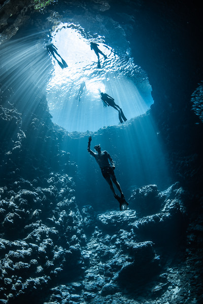 Freedom Diver