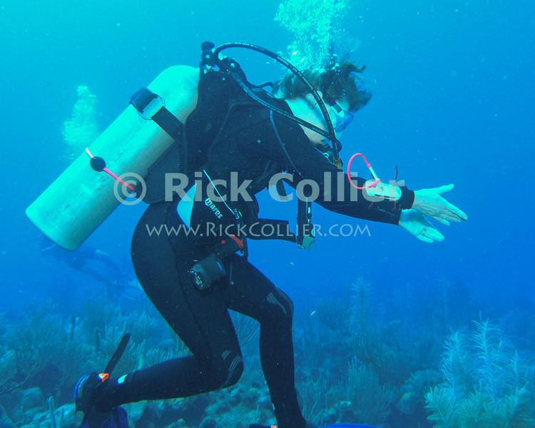 Underwater exasperation.  St. Eustatius, Netherlands Antilles.