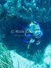"A scuba diver (Nancy) emerges from a cave swim-through.  St. Eustatius (Statia), Netherlands Antilles.<br /> <br /> <br /> <br /> <br /> ""St. Eustatius"" ""Saint Eustatius"" Statia Netherlands Antilles ""Lesser Antilles"" Caribbean underwater diving ocean SCUBA dive reef coral diver swim-through cave"