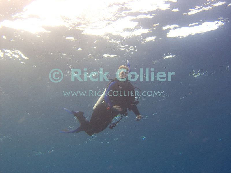St. Eustatius (Statia) Underwater - A scuba diver prepares to surface to end her dive.  I always try to see Nancy get safely de-geared and onboard before I ascend to the boat.  © Rick Collier