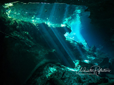One of the most interesting aspects of my cenote photos is the sharp angles at which the light is refracted as it hits the water.  The reason is, at least in part, the higher density of the organic-matter-filled water.