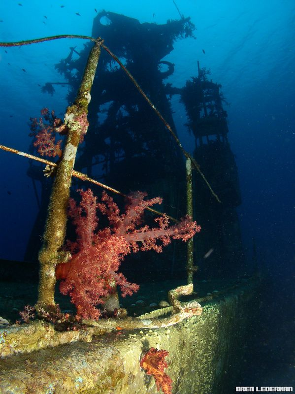 "The ""Satil"" shipwreck"