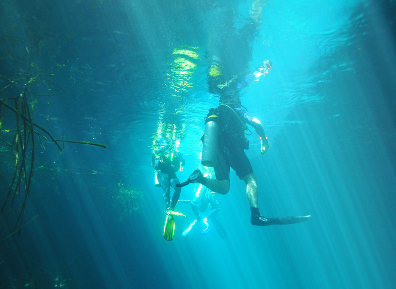 Surfacing to large opening in ceiling of El Eden Cenote - November 2012