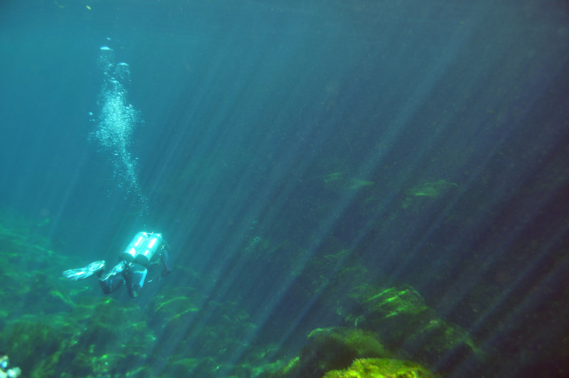 Divemaster leading the way - El Eden Cenote - November 2012