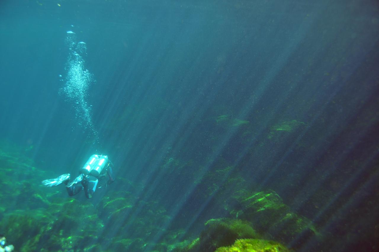 Divemaster leading the way - El Eden Cenote - November 2012
