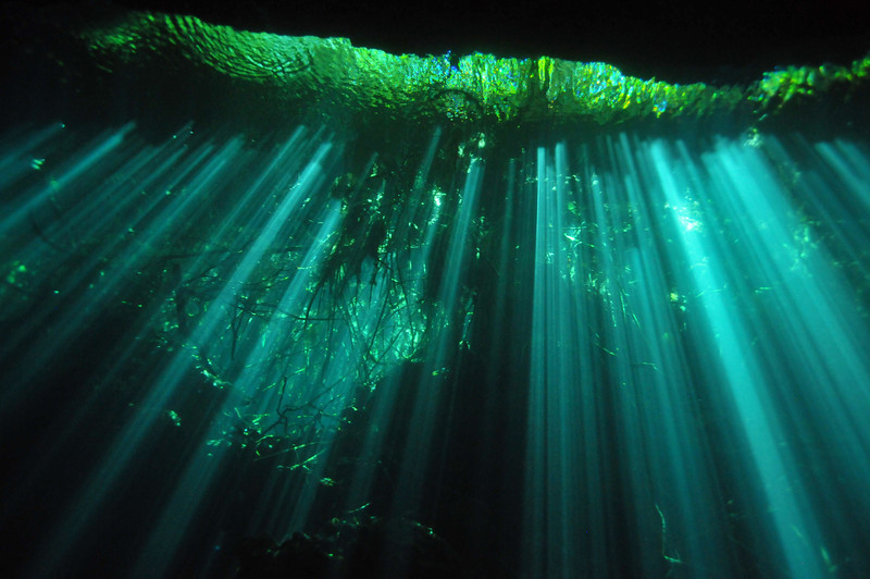 An amazing light show, El Eden Cenote - November 2012