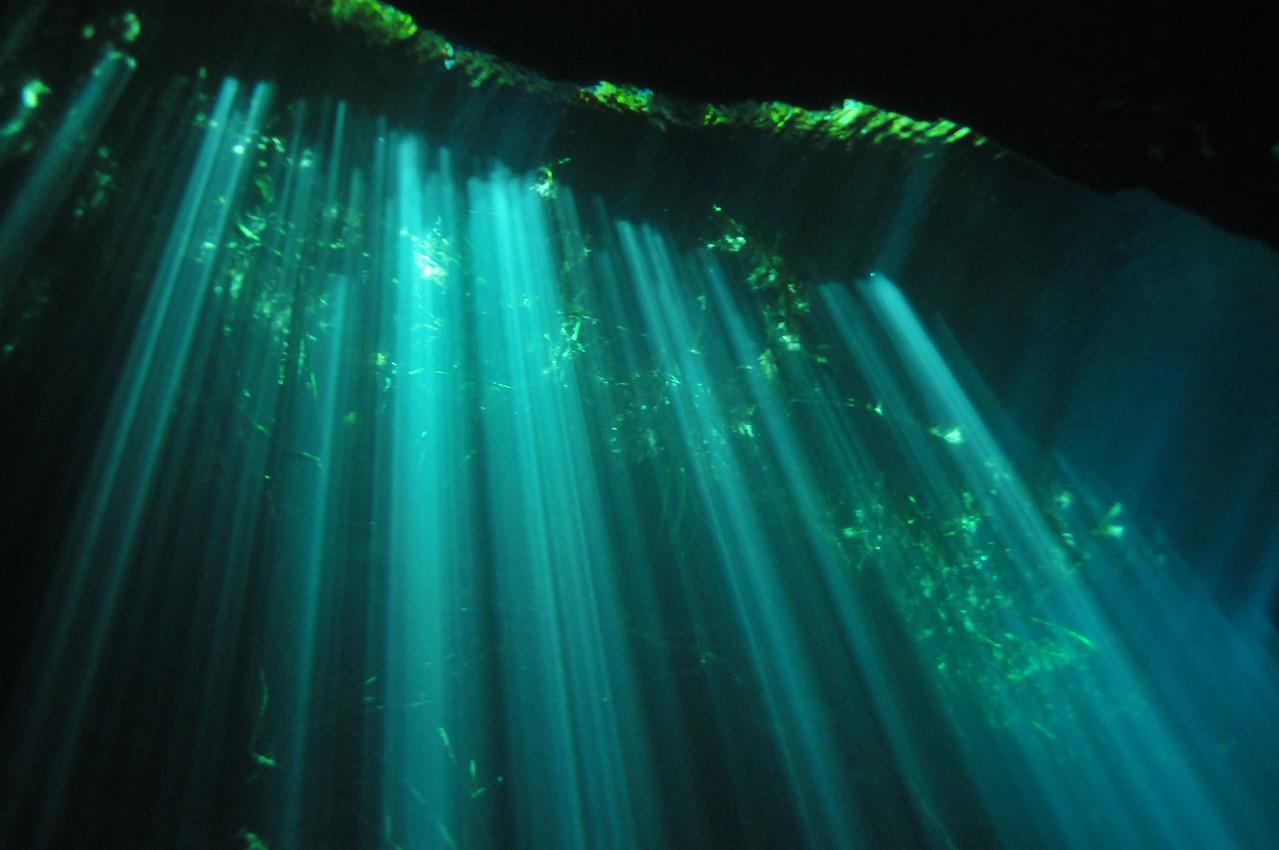 An amazing light show, El Eden Cenote - November 2012