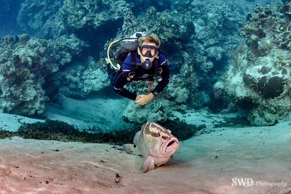 Mike and Nassau Grouper