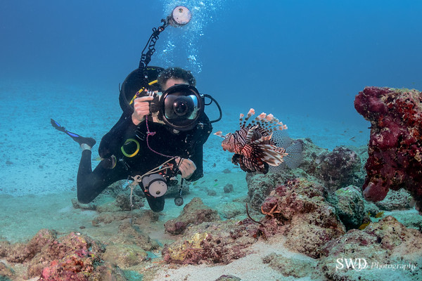 Common Lionfish and Mikael