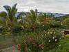 The Wananavu Resort grounds