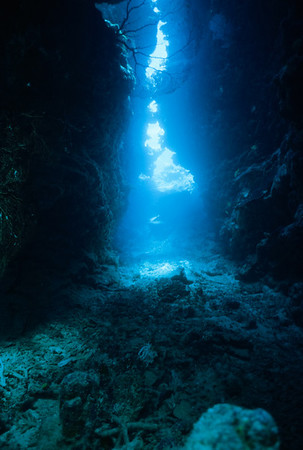 Sunlight filters down through the walls of the grotto at the dive site E-6. Fiji
