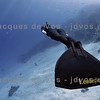 A Beautiful Silence...<br /> <br /> Lotta Ericson - Dahab Egypt<br /> Shot taken while Freediving<br /> <br /> Ikelite 7D Housing (8'' Dome Port)<br /> Ikelite DS-161 Strobes