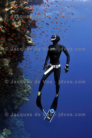 Wonderworld  Linda Paganelli diving outside the Blue Hole in Dahab, Egypt  Ikelite 7D Housing (8'' Dome Port) Ikelite DS-161 Strobes