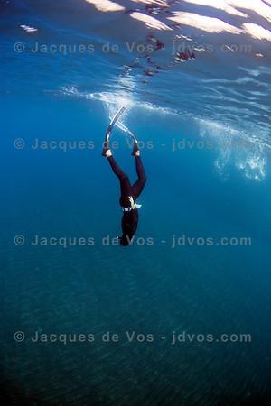 Inverted Bliss - Tenerife