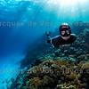 Anna von Boetticher Over Red Sea Coral