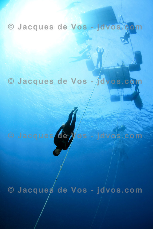 Record Dive<br /> <br /> Korean diver Dongha Kim during his Korean National Record dive.<br /> <br /> Ikelite 7D with two DS-161 strobes