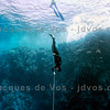 Free Immersion - Blue Hole, Dahab