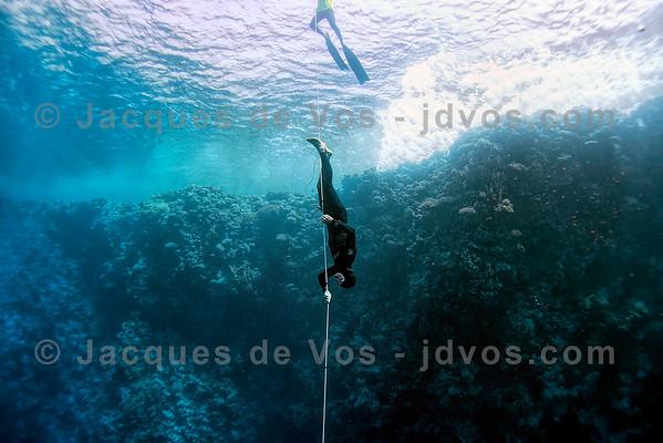 Free Immersion - Blue Hole, Dahab