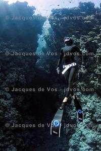 The Bells   Dahab, Egypt Shot taken while Freediving.  Ikelite 7D Housing (8'' Dome Port) Ikelite DS-161 Strobes