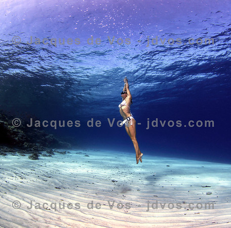The Ocean Is Her Playground...