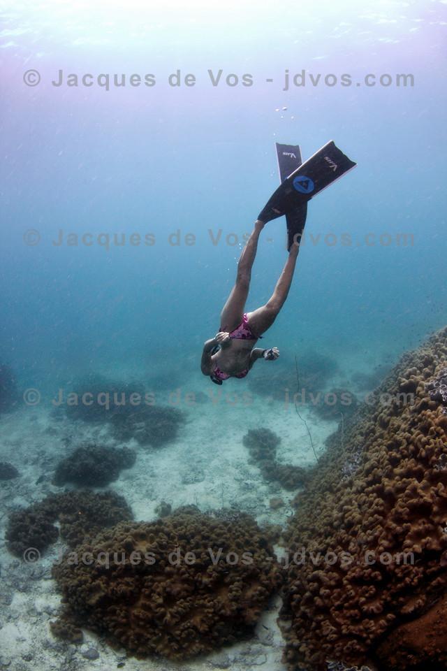 Freediving Girl