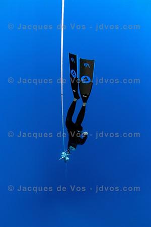 No Limits Freediving - Red Sea