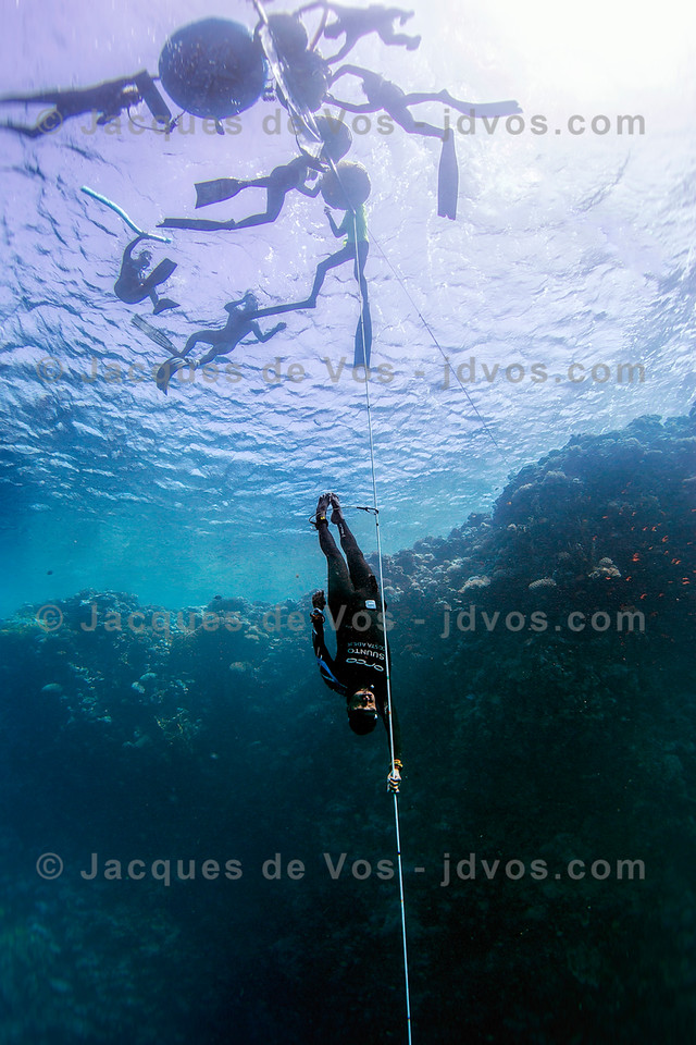 Long Way Down - Blue Hole, Dahab, Egypt