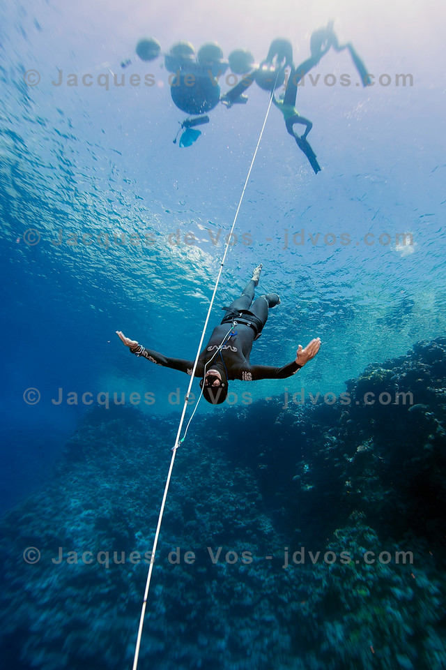 Dynamic No Fins - Freediving Blue Hole