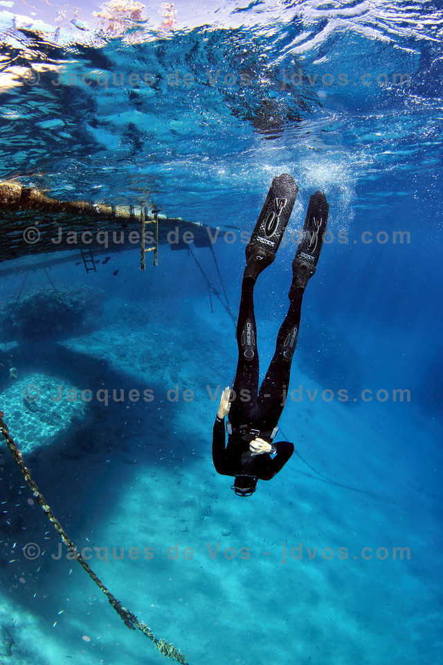 Freediving Sharm