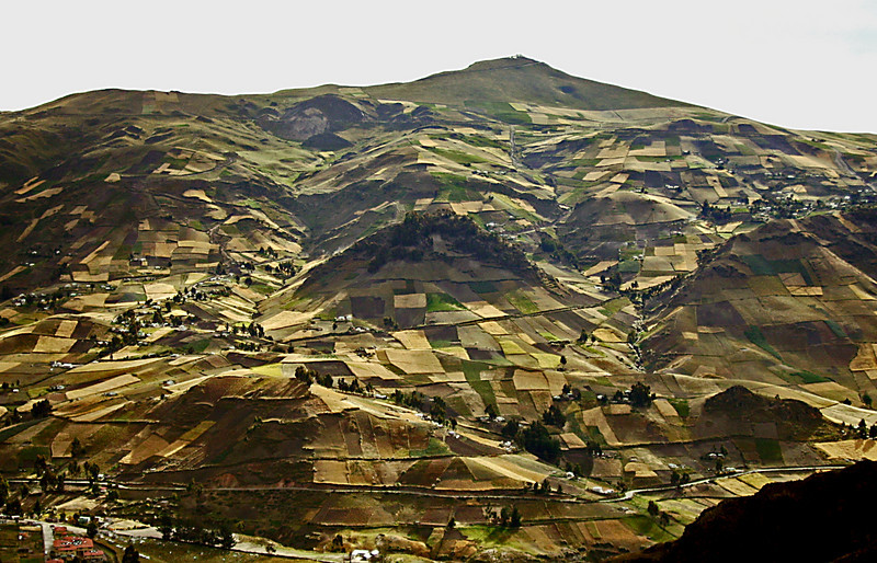 Fields in Andes
