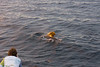 Pilot whales visit our boat
