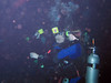 divers wait for mantas; lots of particulate in the water.