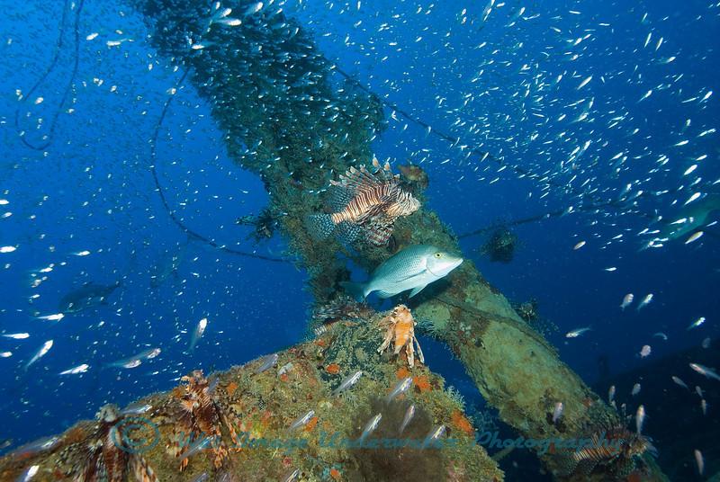 Trinity Bay GBR Australia