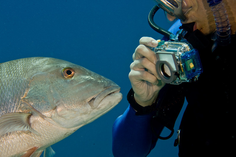Steve with his new best friend (Mutton Snapper)