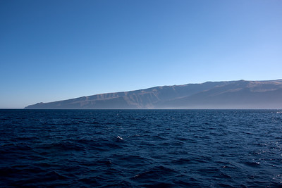 Arriving at Guadalupe Island