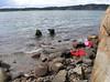 2008-06-15 07. Hällebäck. John 70. Några lunchgäster på väg upp. (Psst! Det LILLA tidvatten vi har i Sverige kan faktiskt ställa till det...).