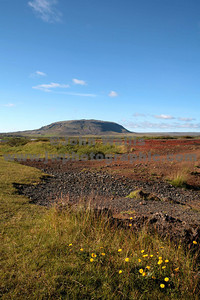 IcelandRN