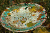 Eggs of that flambouyant cuttlefish , laid on the bottom of a discarded upside-down dinner plate