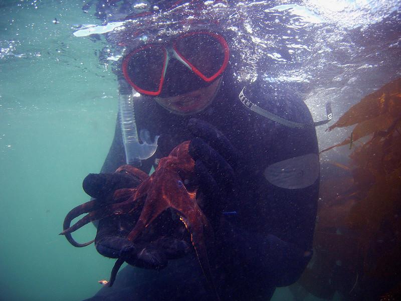 Walt Conklin Two-spot octopus (Octopus bimaculatus) Deer Creek 7/14/07 Sea & Sea DX8000G Tim holding a playful octopus for the 3R's class to view
